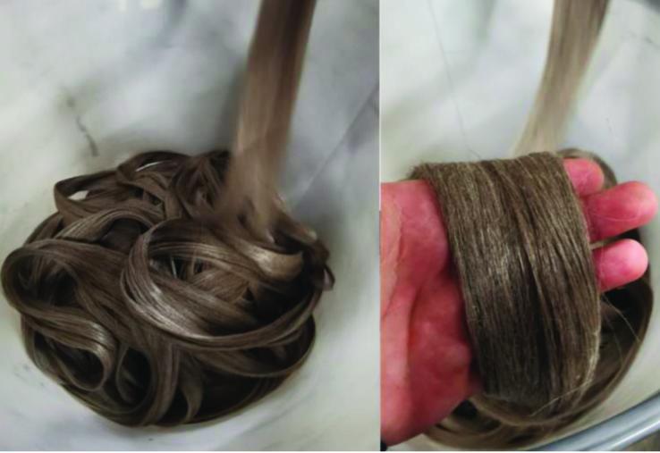 Peignage et filature du chanvre par Safilin.